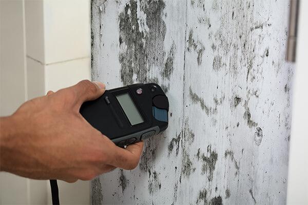 Mold Testing in Boston, MA