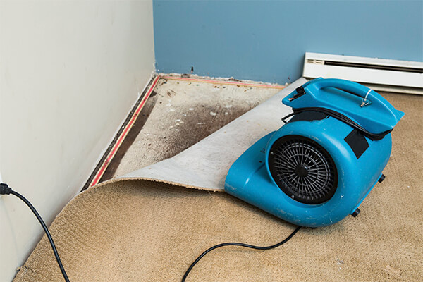 Water Damage Repair in Foxborough, MA