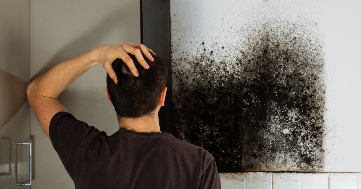 man frustrated by mold
