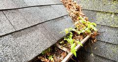 DIY Roof Maintenance Tips & Tricks