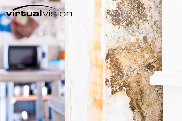 Water damage marketing in Eau Claire, WI