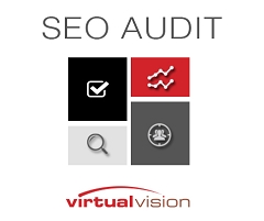 SEO Audit Service Now offered by Virtual Vision