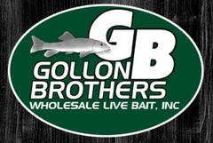 Virtual Vision launches a new website for Gollon Brothers Wholesale Live Bait in Stevens Point